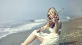 Hoc violin hay