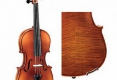 Các lưu ý khi chọn mua Violin