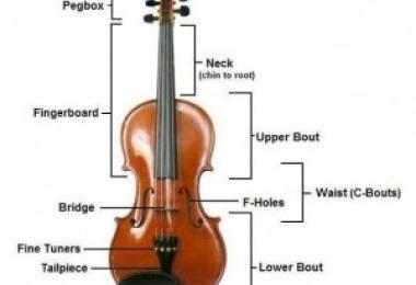 Cấu tạo và âm sắc của đàn Vĩ cầm