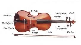 cau-tao-dan-violin