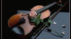 Violin, âm thanh quyến rũ