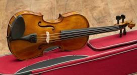 Cần gia sư dạy đàn Violin tại quận Bình Tân