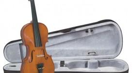 Cần gia sư dạy đàn Violin tại quận Phú Nhuận