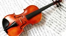 Cần gia sư dạy đàn Violin tại quận Tân Phú