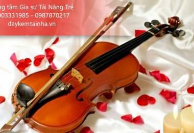 Đàn Violin trọn bộ gồm những gì?
