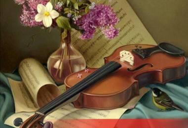 Nên mua đàn Violin cũ như thế nào?
